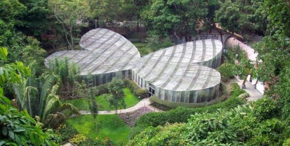 El jardin botanico del quindio y su mariposario turismo for Jardin botanico tarifas